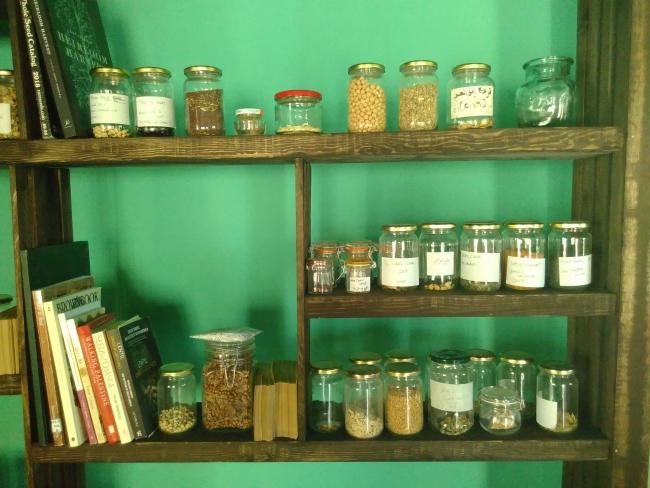 Lokale zaden voor de 'Palestijnse Zaden Erfgoed Bank' in Battir (Palestina), foto: Sylva van Rosse
