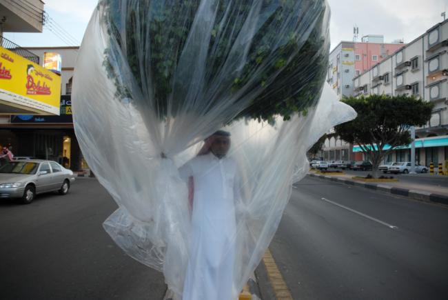 Afbeelding 5. Abdulnasser Gharem, Flora & Fauna, 2007, met dank aan de kunstenaar.